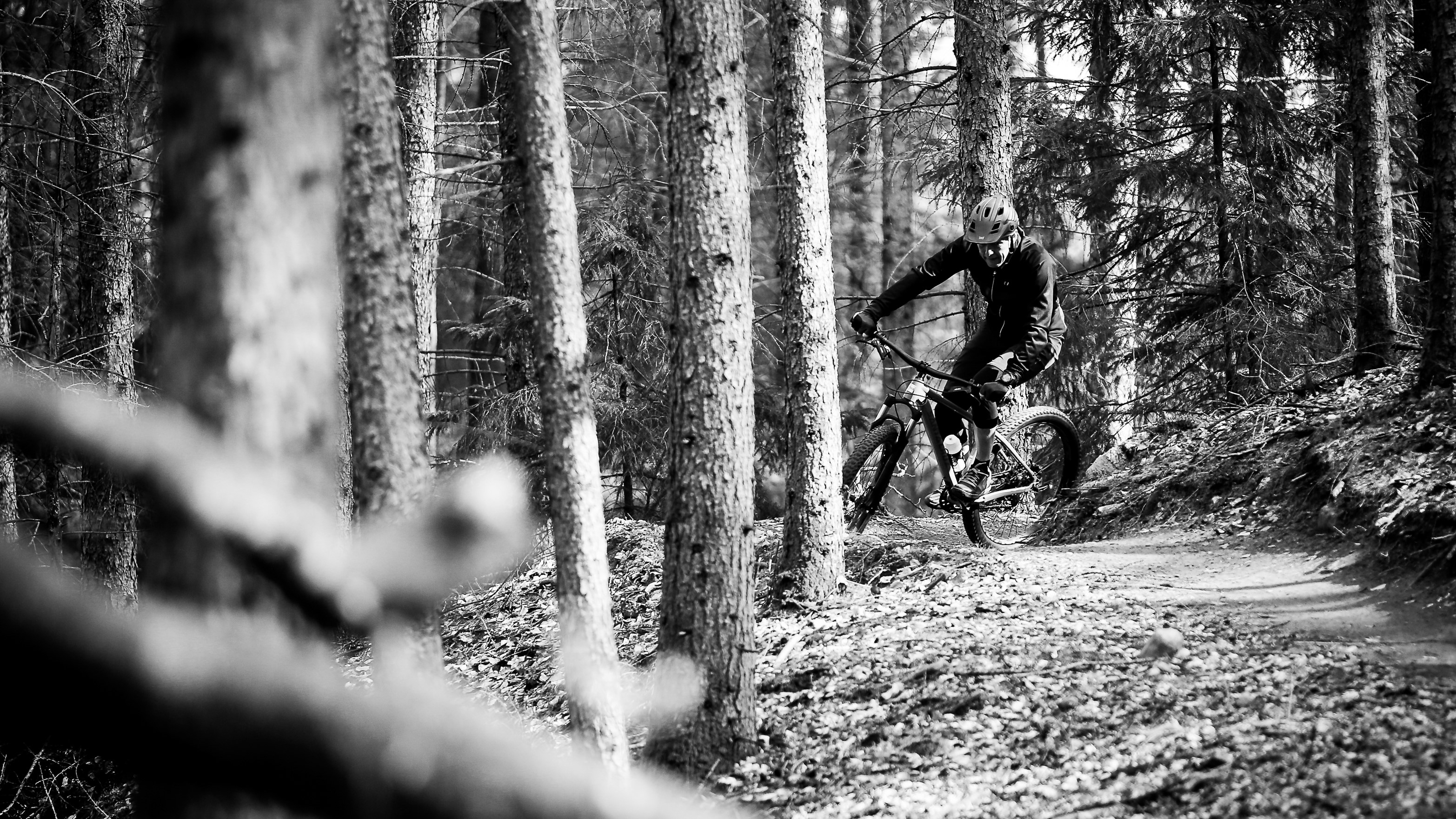 Mountainbike action i skov. Sort hvid-foto.
